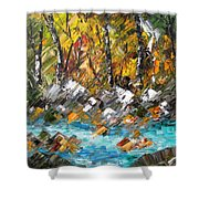 Afternoon Resting Place Shower Curtain