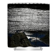 Afternoon Shimmer Shower Curtain