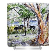 Afternoon Siesta On The Farm Shower Curtain