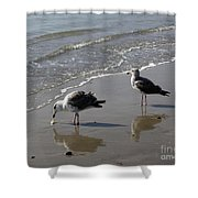 Afternoon Snack Shower Curtain