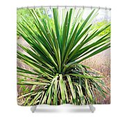 Afternoon Yucca Shower Curtain