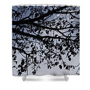 Against The Sky Shower Curtain