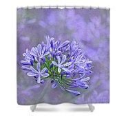 Agapantha Lilac Pastel By Kaye Menner Shower Curtain