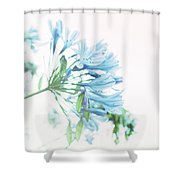 Agapanthus 1 Shower Curtain