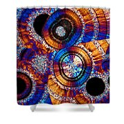 Agate 43 Shower Curtain