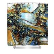 Agate Geode Shower Curtain
