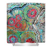 Agate Inspiration - 16b  Shower Curtain