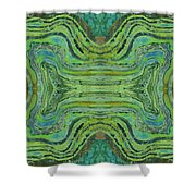 Agate Inspiration - 24 B  Shower Curtain