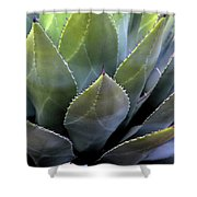 Agave 5 Shower Curtain