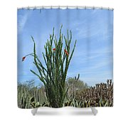 Agave And Cactus Shower Curtain