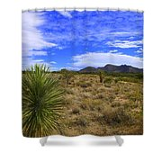 Agave And The Mountains 3 Shower Curtain