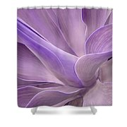Agave Attenuata Abstract 2 Shower Curtain