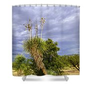 Agave Cactus And A Purple Sky Shower Curtain
