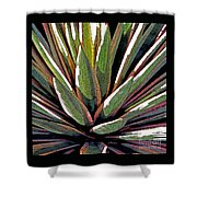 Agave Impressions 1 Shower Curtain