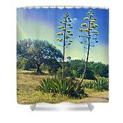 Agave Trail  2 Shower Curtain