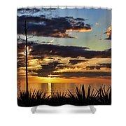 Agave Sunset Shower Curtain