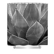 Agave Tucson Airport Shower Curtain