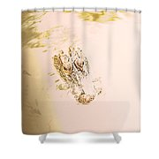 Aged Alligator Shower Curtain