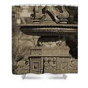 Aged And Worn Swan Statues On Rustic Cast Fountain Shower Curtain