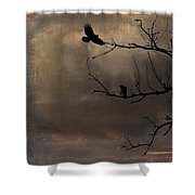Aging Colors Shower Curtain