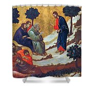 Agony In The Garden 1311 Shower Curtain