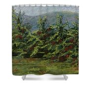 Ah The Apple Trees Shower Curtain