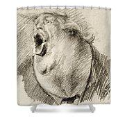 A..hole Shower Curtain