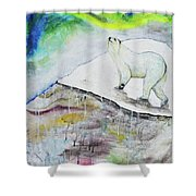 Ahroarah Borealis Shower Curtain
