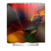 Ai041010 Shower Curtain