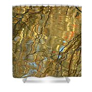 Airline Trail Abstract 2 Shower Curtain