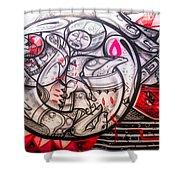 Airplane Grafitti Shower Curtain