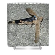 Airplane Grasshopper Shower Curtain