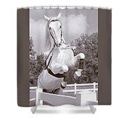 Airs Above The Ground - Lipizzan Stallion Rearing Shower Curtain