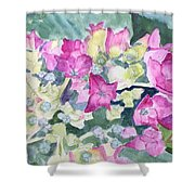 Ajisai Color-magenta Shower Curtain