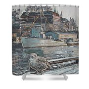 Akershus Seagull Shower Curtain
