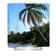 Akumal Sur Beach 01 Shower Curtain
