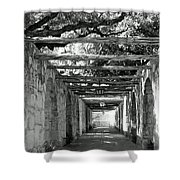 Alamo Corridor Shower Curtain