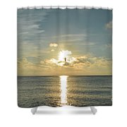 Wings Of The Sun Shower Curtain