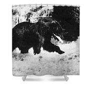 Alaska: Brown Bear Shower Curtain