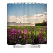 Alaska Summer Love Shower Curtain