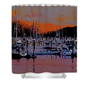 Alaskan Harbor 8 Shower Curtain