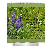 Alaskan Lupine Heaven Shower Curtain