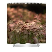 Alaskan  Summer Foxtail Shower Curtain