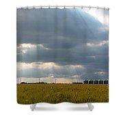 Alberta Wheat Field Shower Curtain by Stuart Turnbull