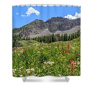 Albion Summer Flowers Shower Curtain