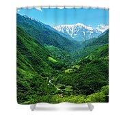 Alborz Green Shower Curtain