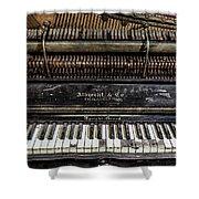 Albrecht Company Piano Shower Curtain
