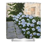 Courtyard At Condes De Albarie Shower Curtain