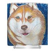 Alek The Siberian Husky Shower Curtain