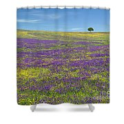 Alentejo Wild Flowers Shower Curtain